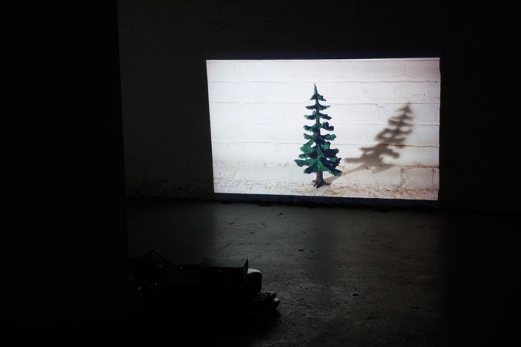 Jill Sorensen, Fir Tree Small II   Affirmative Rebuttal