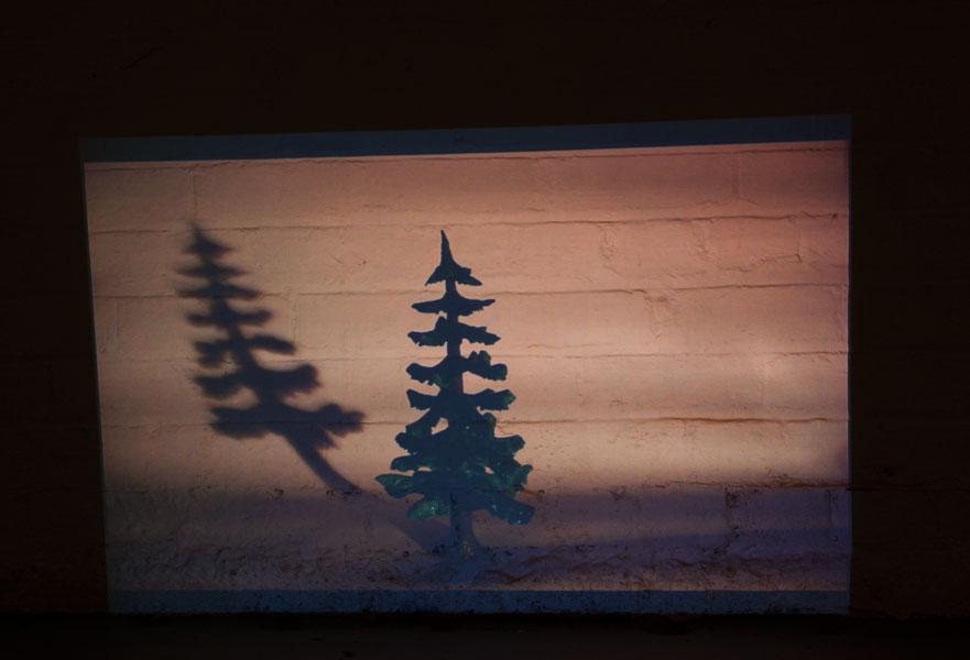 fir-tree-small-II-4