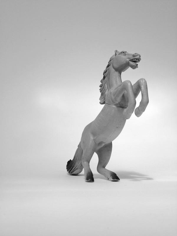 Horse, rearing