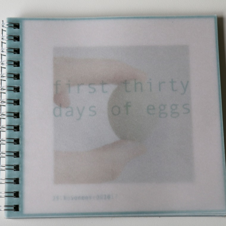 book 1 First 30 Eggs Cover