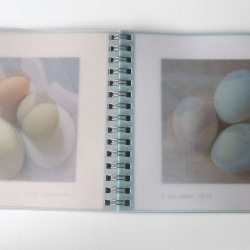 book1 eggs 2 Dec